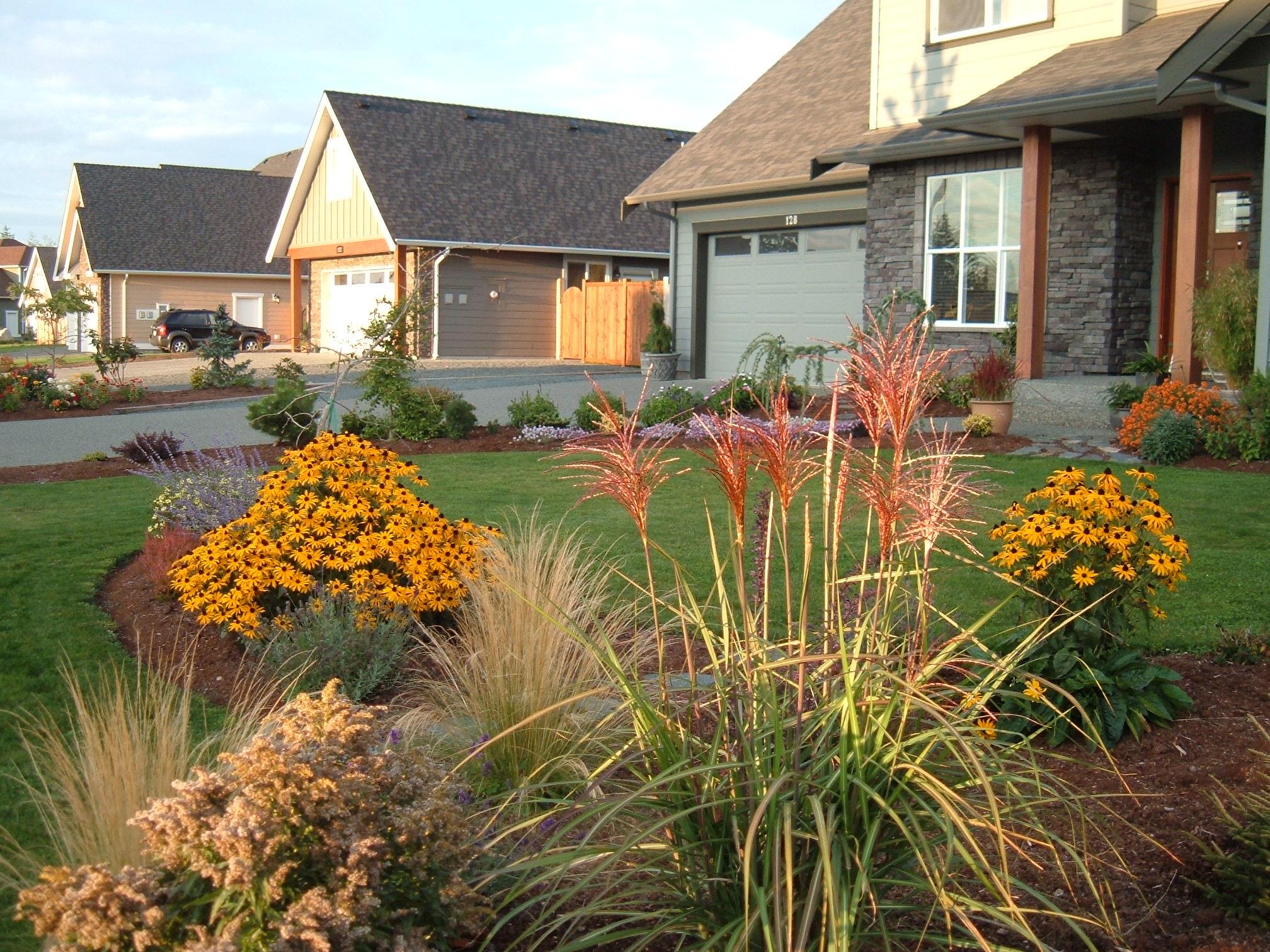 Deer-proof Plants Part III | Hortophile – My New Garden