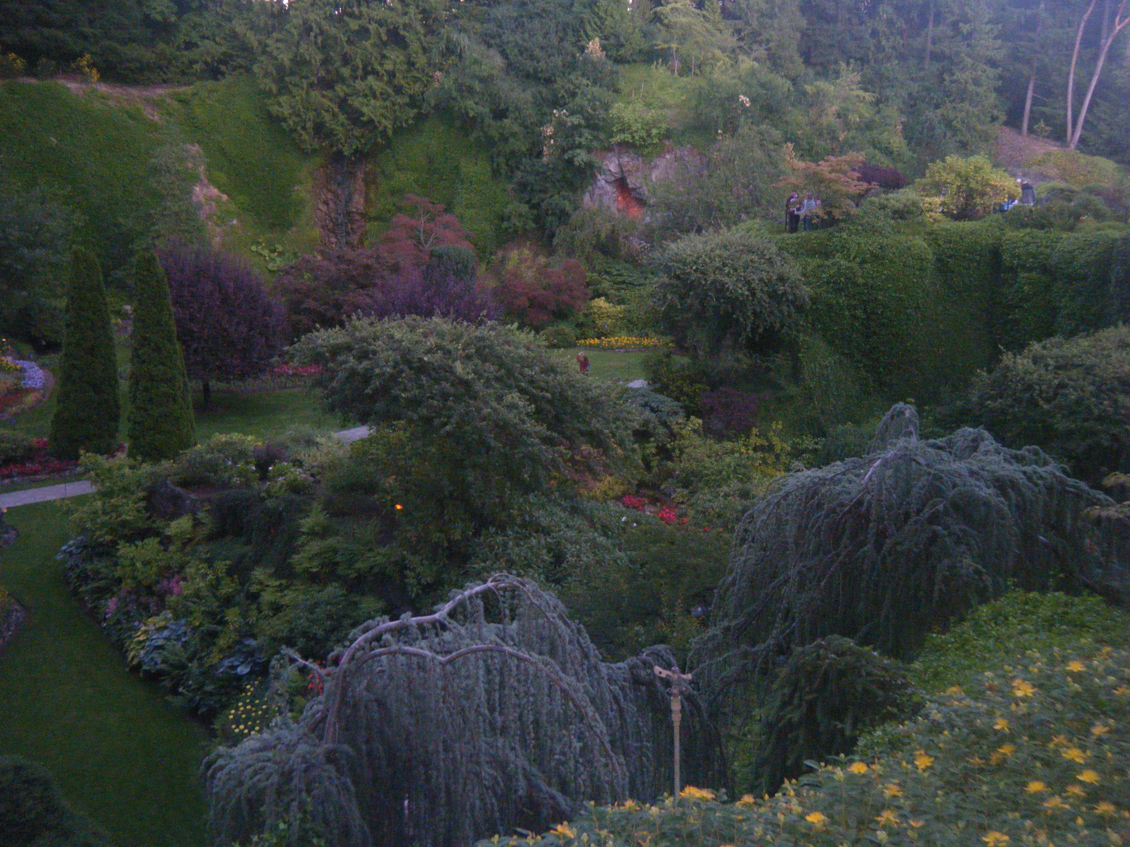a visit to butchart gardens hortophile u2013 my new garden