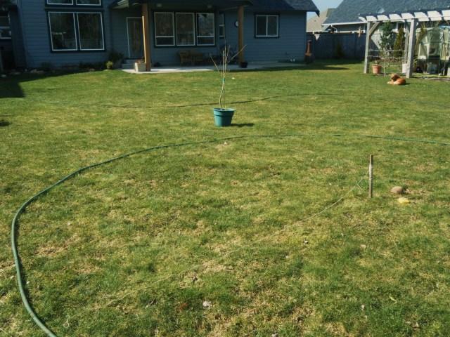 Scribing the circular lawn