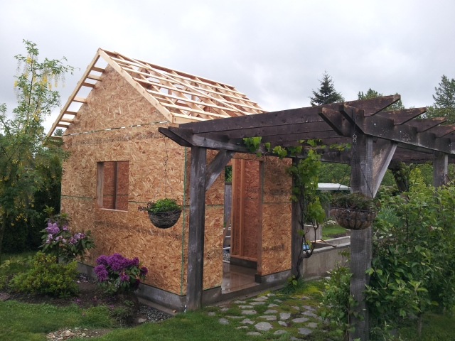 Shed construction - roof strapping